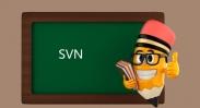 Ubuntu建立svn的方法-站长亲自测试过